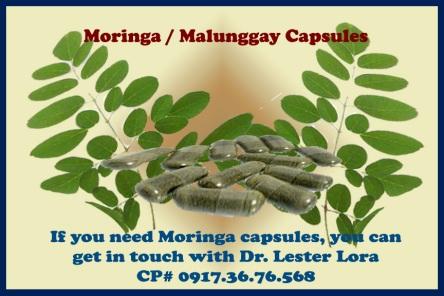 moringa-copy.jpg